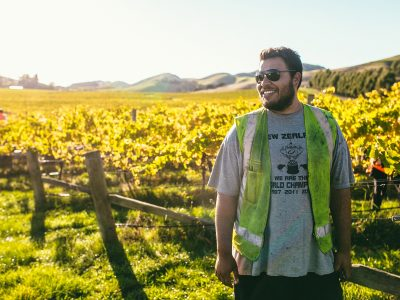 Pinot Noir Harvest with Misty Cove Wines
